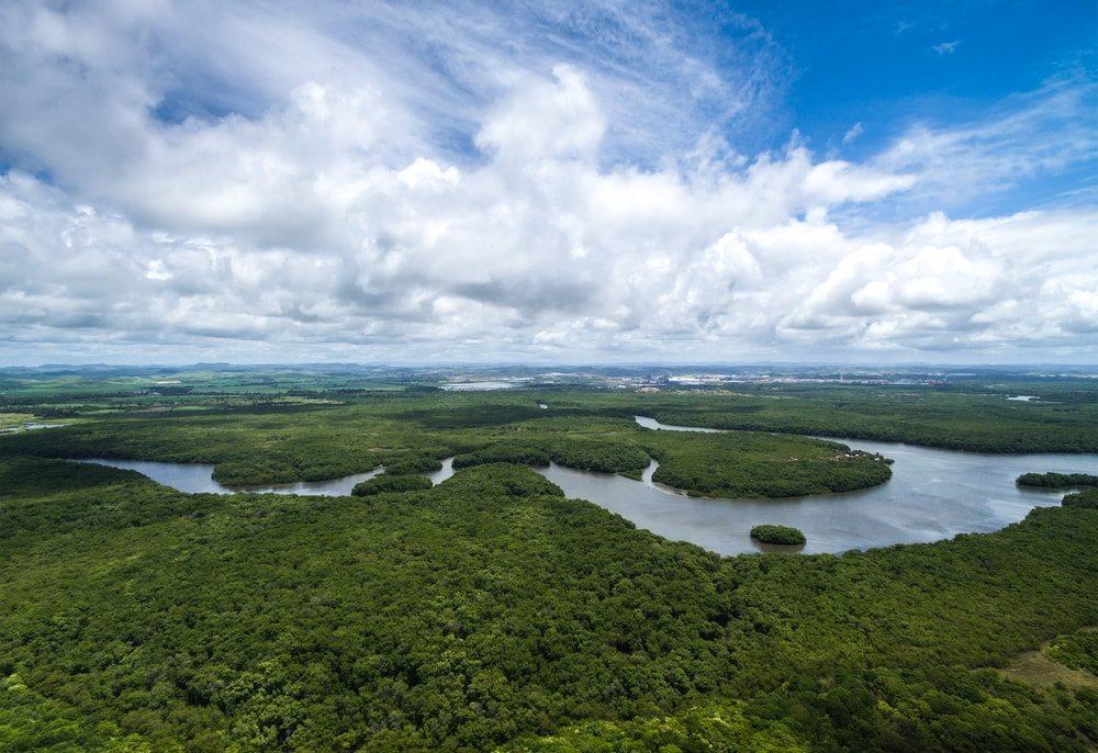 amazonas-esoerdo