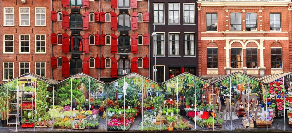 tulipan-piac-amszterdam
