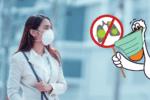 Koronavírus és az utazás: minden, amit tudnod kell