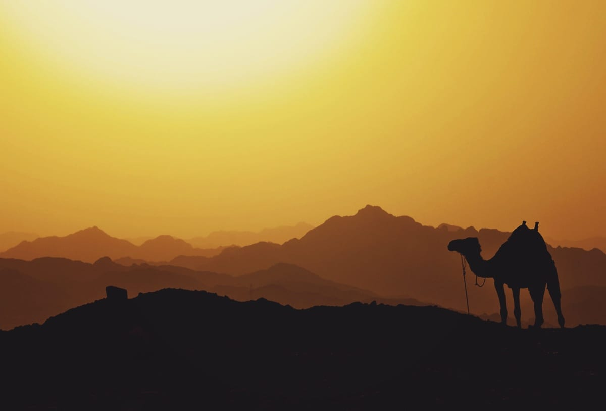 10 Egyiptom